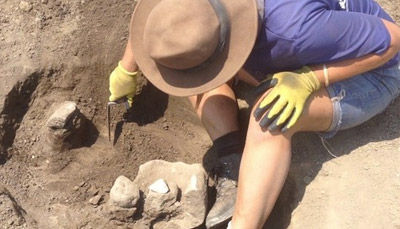 Career as Archaeologist