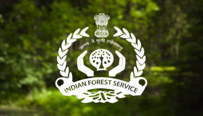 Career as Indian Forest Service (IFS) Officer