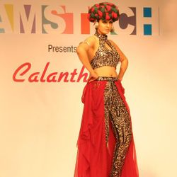 Hamstech Institute of Fashion & Interior Design
