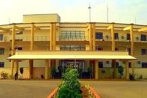 HNLU - Primary