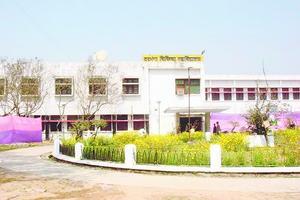 DMC - Primary