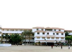 A.V.S. College of Arts & Science