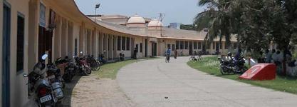 C M College