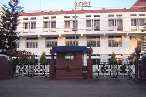 CIFNET - Primary
