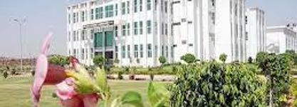 College of Science & Engineering