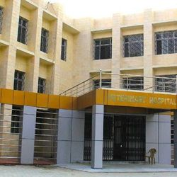 College of Veterinary Science and Animal Husbandary