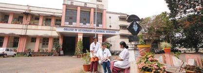 College of Veterinary & Animal Sciences