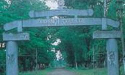 Dudhnoi College