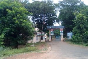 DGC - Primary