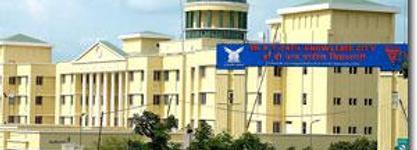 D Y Patil International College
