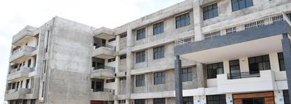 Dalia Institute of Diploma Studies