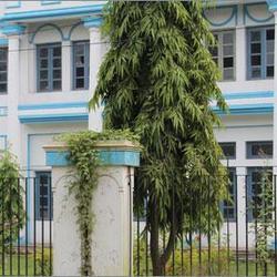 Derozio Memorial College