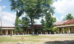 Fakiragram College
