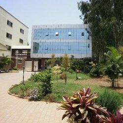 Faran College of Management