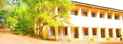 Government Brennen College