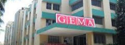 Global Entrepreneurship & Management Academy (GEMA)