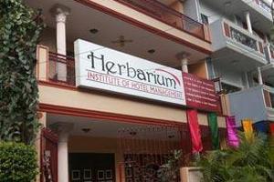 HIHM - Banner