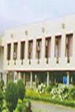 IGIDR - Primary