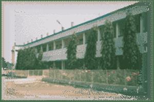 KC - Primary