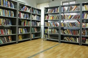 RGI - Library