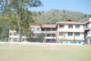 MLSM - Primary