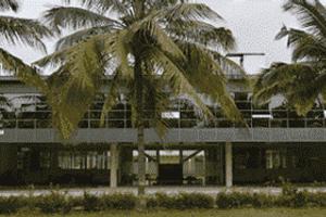 MYCEM - Primary