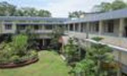 Nazira College