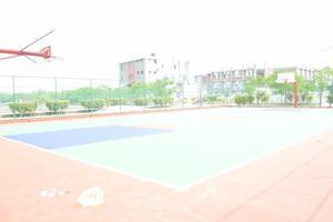 YGI - Ground