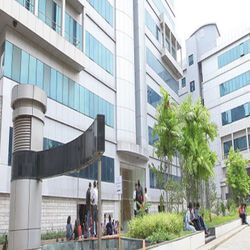 King's Cornerstone International College