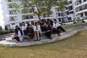 - Student