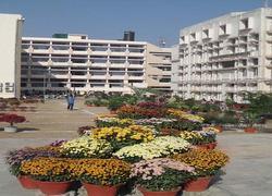 D.A.V. College for Girls