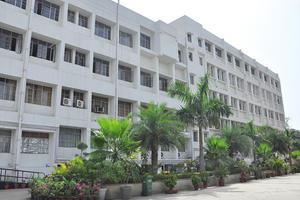 MSC - Primary