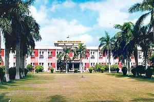 NDRI  - Primary