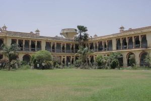 ALLAHABAD DEGREE COLLEGE - Other