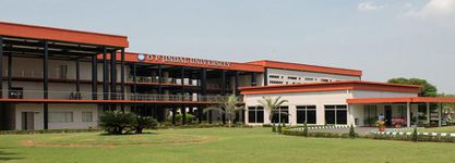 OP Jindal University
