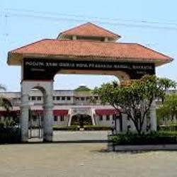 P.S.G.V.P Mandal's College of Pharmacy