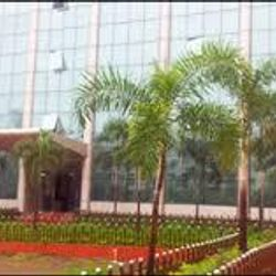 Pramod Ram Ujagar Tiwari Saket Institute of Management