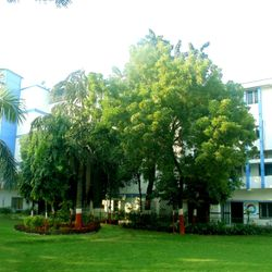 R.B. Institute of Management Studies