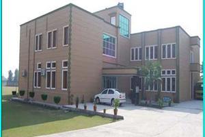 RMSCE - Primary