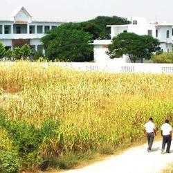 Shri Shakti Degree College