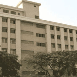Balaji Institute Of Management Sciences