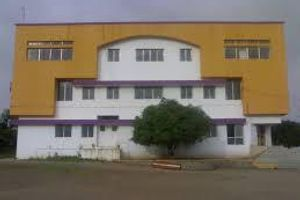SIBM - Primary