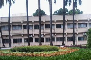 CMPHMC - Primary