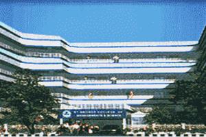 SGCMSN - Primary