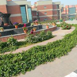 University School of Information & Communication Technology