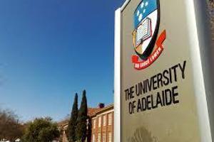 UA - Banner