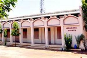 UDC - Primary