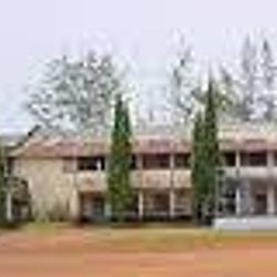 Vidya Degree College