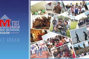 IBMR - Other