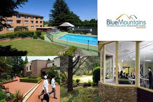 BLUE MOUNTAINS - Banner